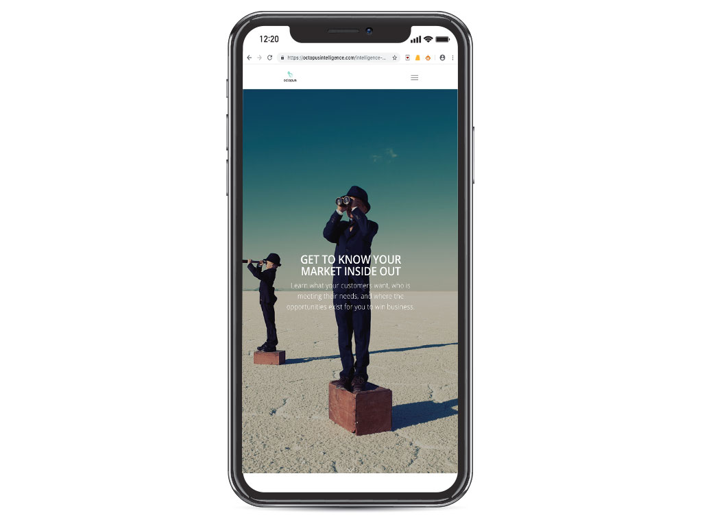 website design view on iphone X telescope boys market inside out page for Octopus Intelligence creative work website design and marketing