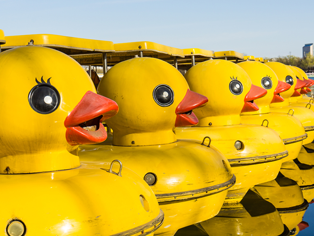 a row of yellow duck boats design & marketing news engagement marketing