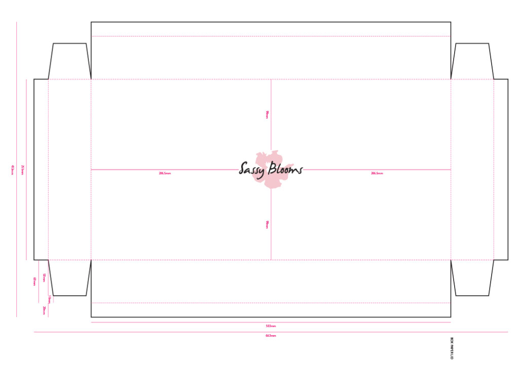 packaging technical drawing of box for Sassy Blooms creative work branding and packaging