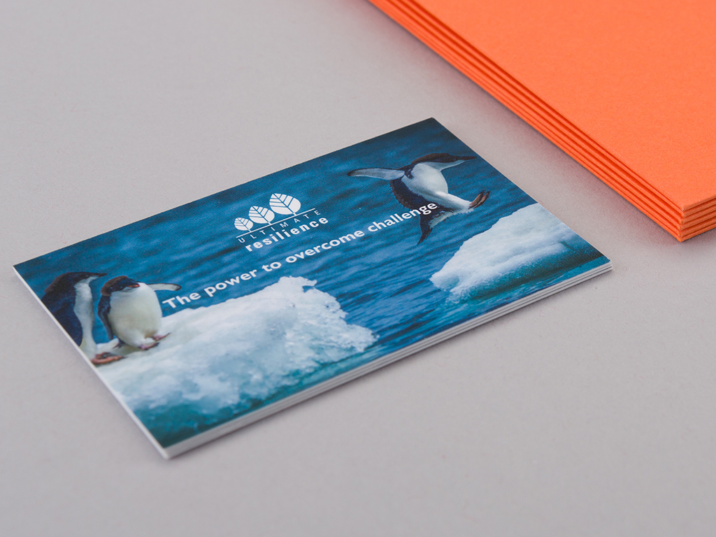 Ultimate Resilience business card design front example creative work website design and marketing